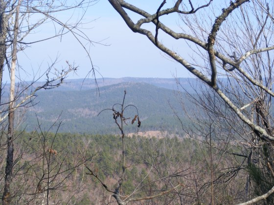Ouachita Trail 05: FR 33 to FR 274(W) (Blowout Mtn) (96.0 to 101.0) photo