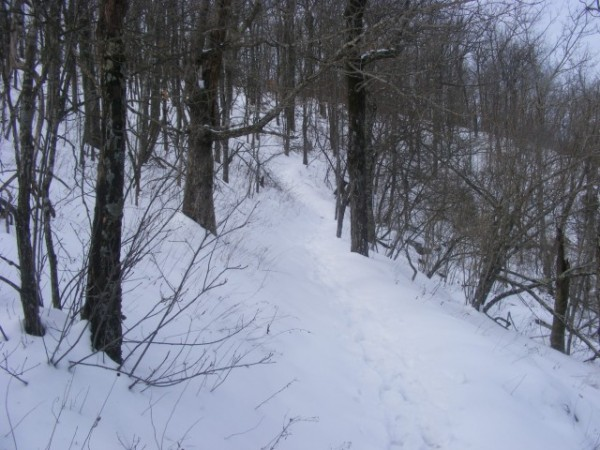 Mount Magazine: 2010 Bear Hollow Trail Winter Pics photo