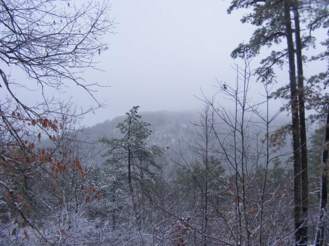 Ouachita Trail 04: FR 48 to FR 813 (Rockhouse Mtn.) (88.2 to 90.3) photo