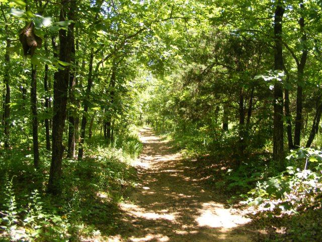 Mount Magazine: Will Apple's Road Trail - 3mi (O&B) photo