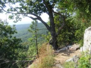 Pick a Trail - West Arkansas photo