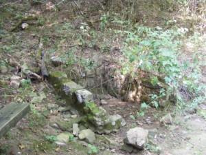 Pick a Trail - Southwest Arkansas photo