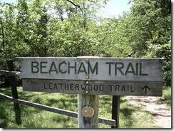 Lake Leatherwood: Beacham and Fuller Trails Hike photo