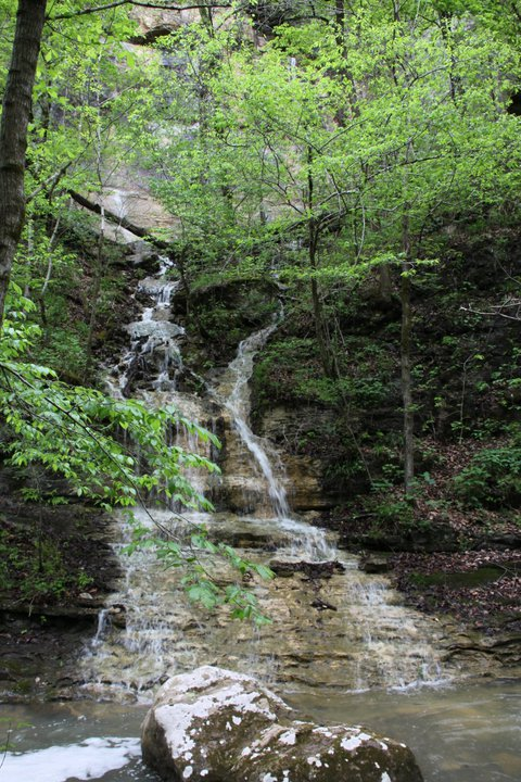 Indian Creek to Tunnel Cave Falls (Buffalo River) - 5 mi photo
