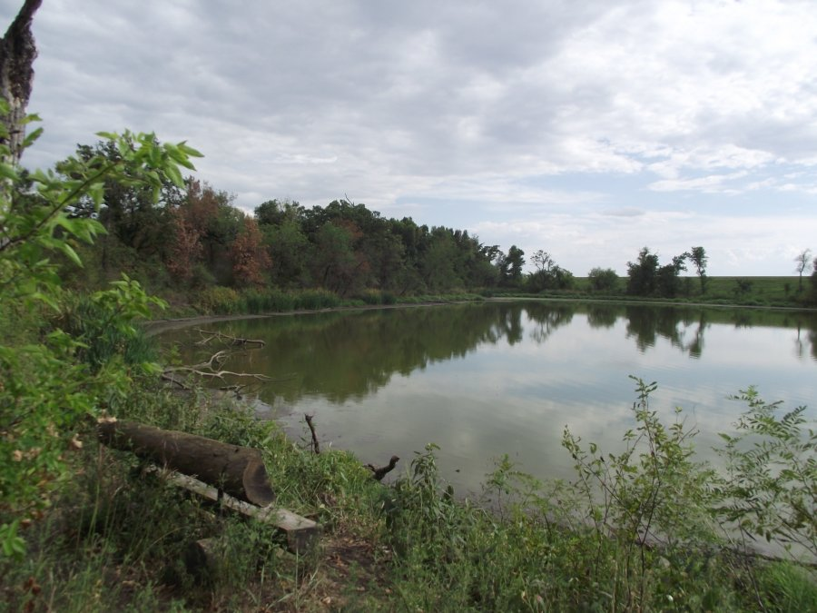 Oxley Nature Center
