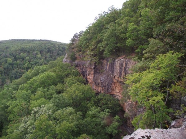 Hawksbill Crag Hike (Ozark Forest) photo