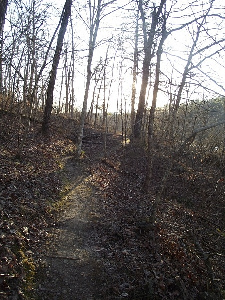 Kings Bluff Loop Trail (Ozark Forest) - 2 mi photo