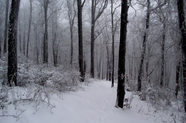 Ouachita Trail Rich Mountain Snow Photos December 2012 photo