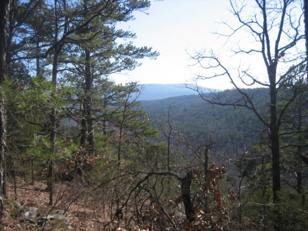 Mt. Magazine Trail (Cam. Bluff-Cove Lake) - 10 mi (ptp) photo