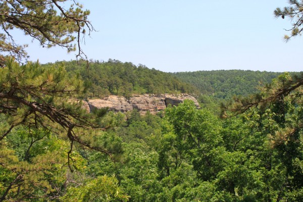 Sams Throne Trail (Ozark Forest) - 3mi photo