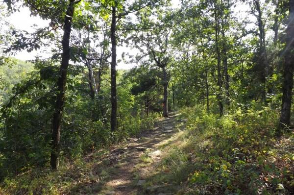 Bear Hollow Trail, Mount Magazine State Park