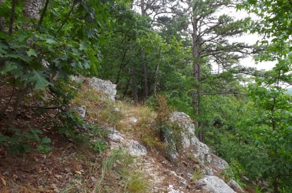 Buckeye Trail - Caney Creek Tr. Loop (Ouachita For.) - 9mi photo