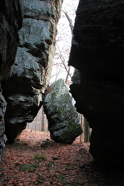 Buzzard Roost Trail (Ozark Forest) photo