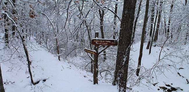 Mt. Magazine: Benefield E. Loop Trail Snow Photos, Pt. 1 photo