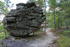 Pick a Trail - Central Arkansas photo