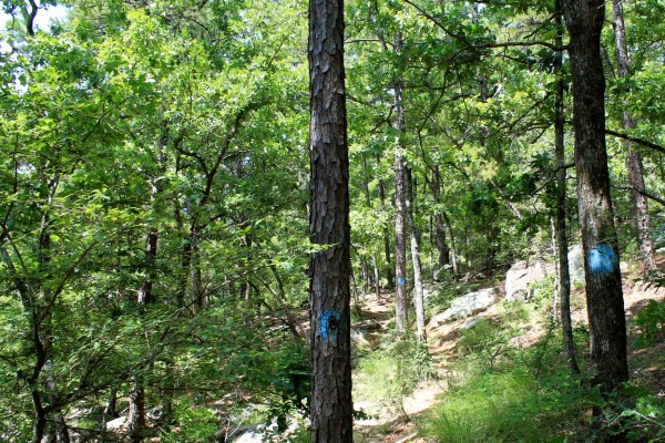 Robbers Cave: Rough Canyon Trail Photos photo