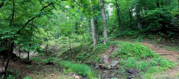 Bull Shoals: Dogwood Nature Trail (Corps Rec Area) - 3mi (o&b) photo