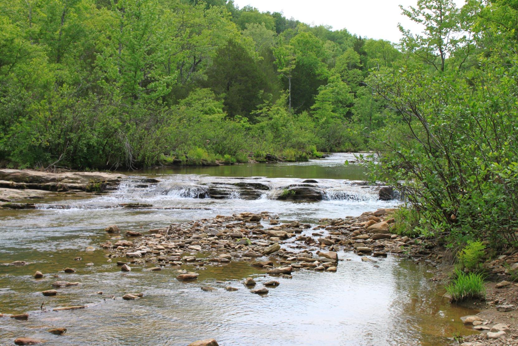 Kings River Falls Trail Arkansas Images