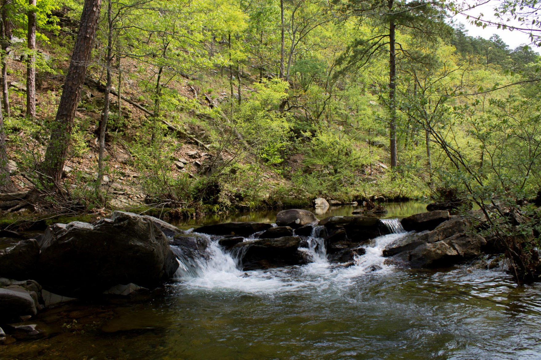 Ouachita National Forest Pictures To Pin On Pinterest