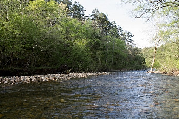 Caney Creek Trail - West (Ouachita Forest) - 11 mi (o&b) photo