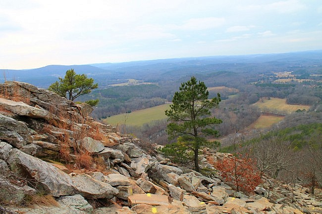 Pinnacle Mountain: West Summit Trail Pics 2014 photo