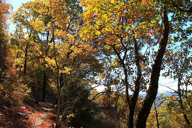 White Rock Mountain Rim Trail (Ozark Forest) Fall 2014 Pics photo