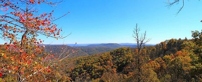 White Rock Mountain Rim Trail (Ozark Forest) - 2mi photo