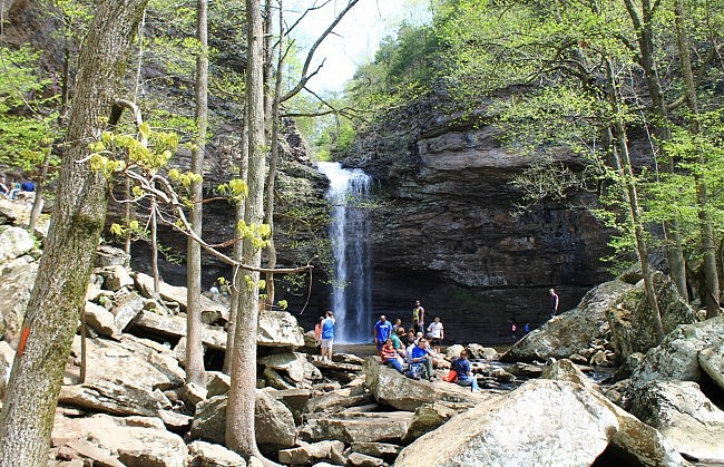 Petit Jean: Cedar Falls Trail – 2 mi photo