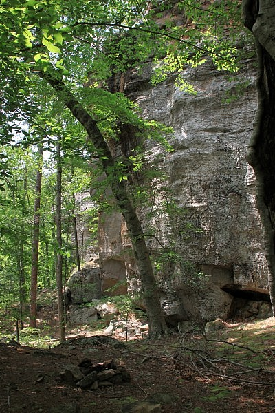 Pam's Grotto (Ozark Forest) photo