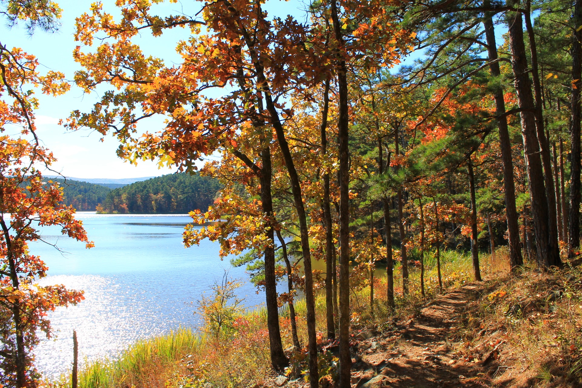 Cedar Lake Trail (Ouachita Forest) – 3 mi | Arklahoma Hiker