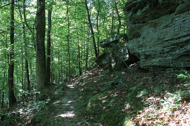 Buffalo River Trail: Steel Creek to Steel Creek Overlook - 3 mi (o&b) photo