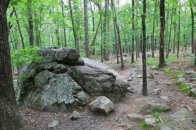 Pinnacle Mountain: Rocky Valley/East Quarry Trails – 3 mi photo