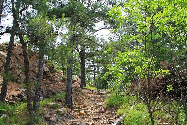 Rocky Valley/East Quarry Trails, Pinnacle Mountain State Park