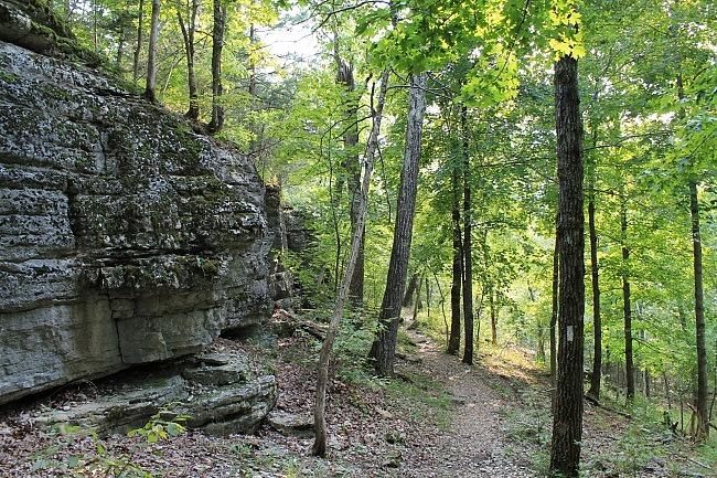 Hobbs: Shaddox Hollow Trail - 1mi photo