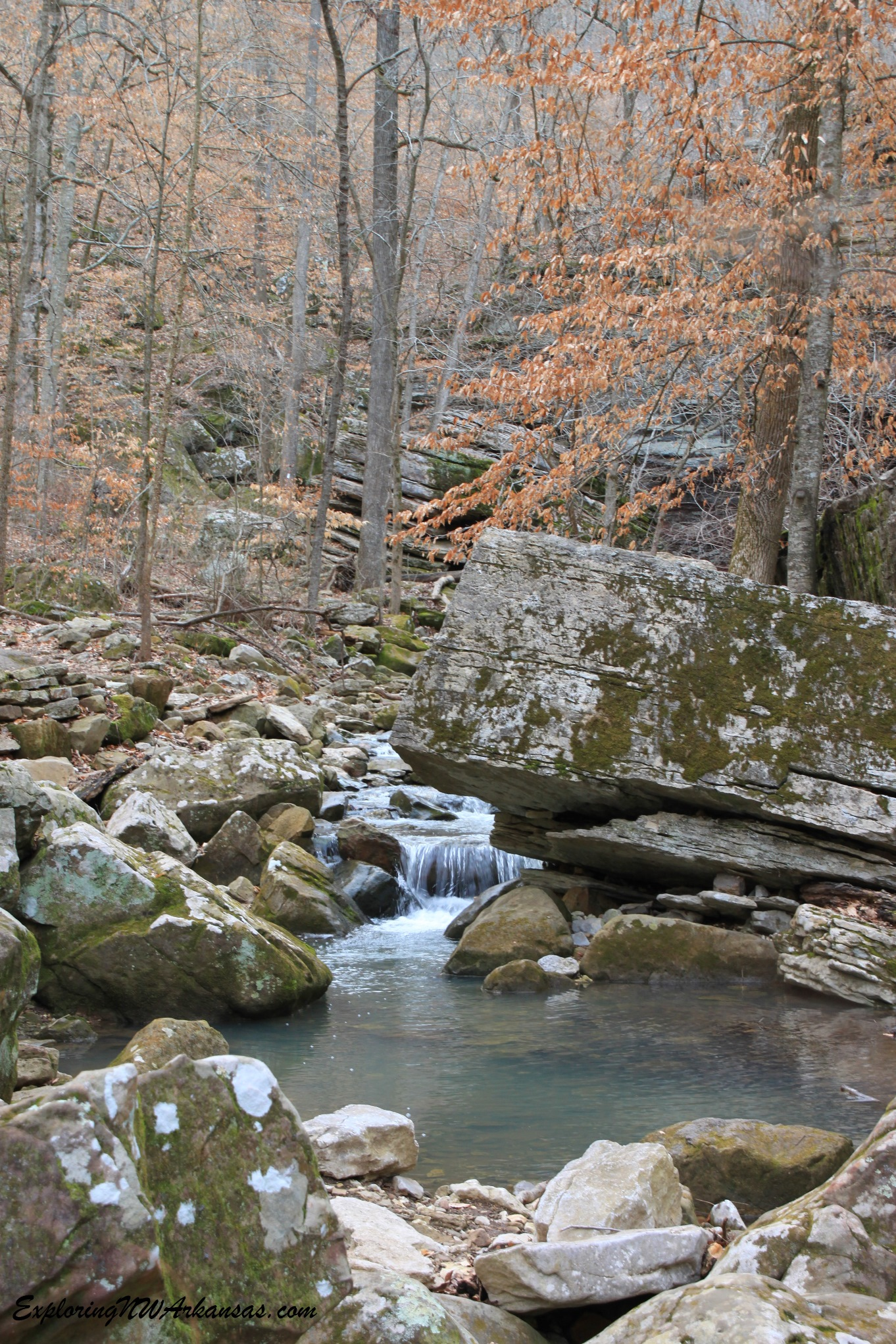 Little Lost Valley Cabin: Lost Valley Trail + Eden Falls (Buffalo River)