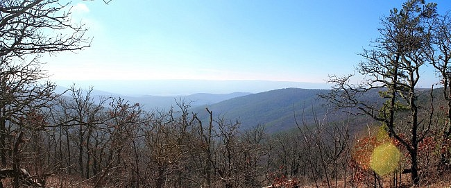 Ouachita Trail 02: Winding Stair TH to Highpoint to Saddle (23.7 to 26.3) photo