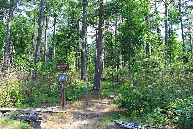 Earthquake Ridge Trail + Southern Loop (Ouachita Forest) – 3 mi photo