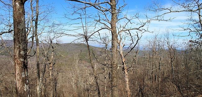 Ouachita Trail 03: Talimena Drive to Hwy 270 (Black Fork Mtn) TH (54.1 to 56.7) photo