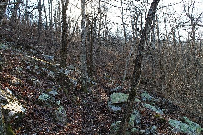 Ouachita Trail 03: Talimena Drive to Hwy 270 (Black Fork Mtn) TH (54.1 to 56.7) photo