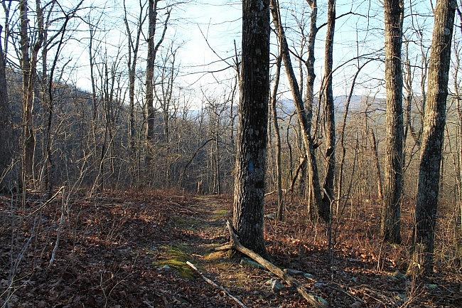 Western Ouachita Trail Hikes photo