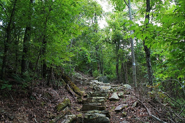 Mount Nebo: Pics of Nebo Steps/Nebo Springs Trails photo