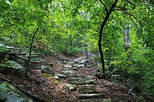 Pick a Trail - West Arkansas photo