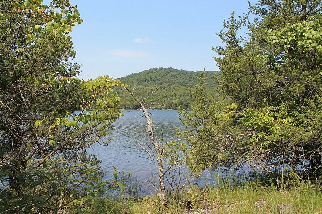 Lake Leatherwood: Beacham Trail Pics photo
