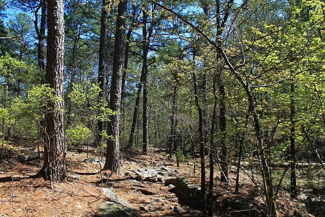 Robbers Cave: Rough Canyon Trail Pics photo