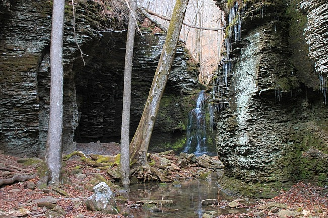 Fuzzybutt Falls (Richland Creek Wilderness, Ozark Forest) photo