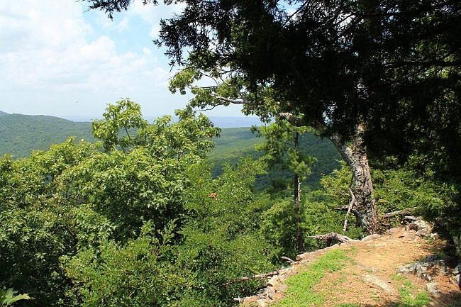 Mount Nebo: Summit Park Trail - 2 mi photo