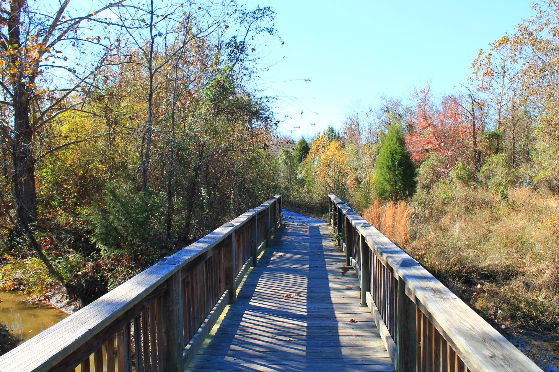 Huckabee Nature Center Trails